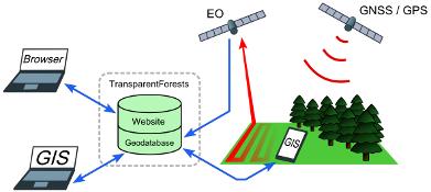 TransparentForests Schematic